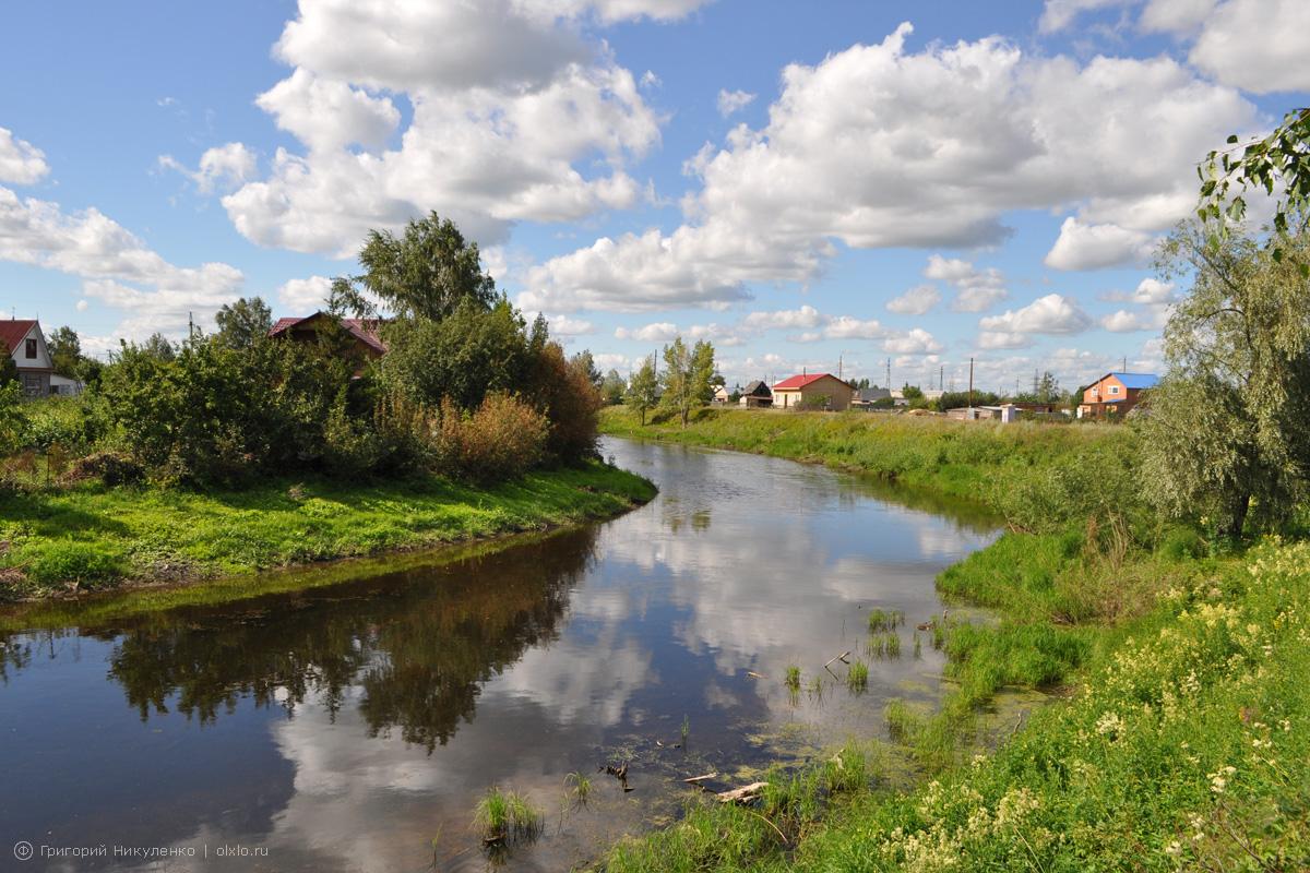 Река Камышловка. Омская область